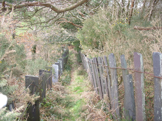 The descending path with contrasting fencing styles