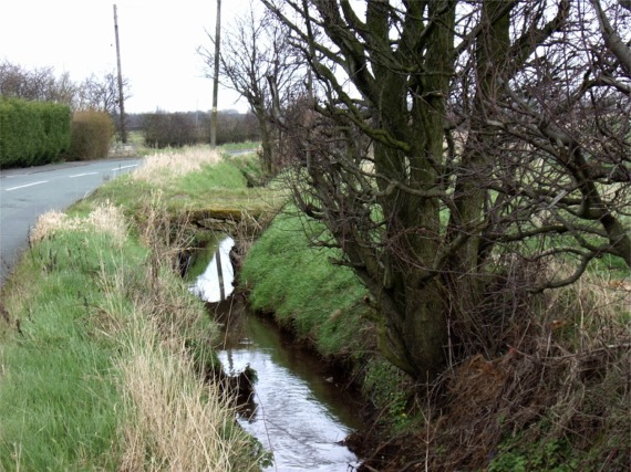 Roadside ditch, Brewery Lane, Melling
