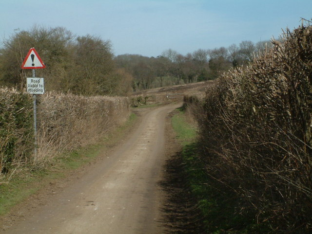 Green Lane near Grub Wood
