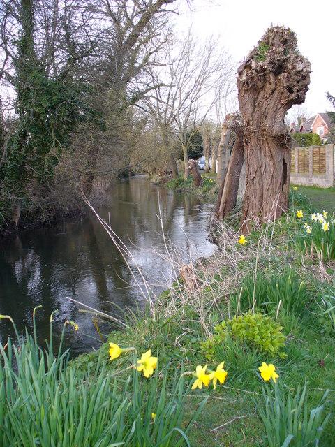 Riverside Walk, Shrewton