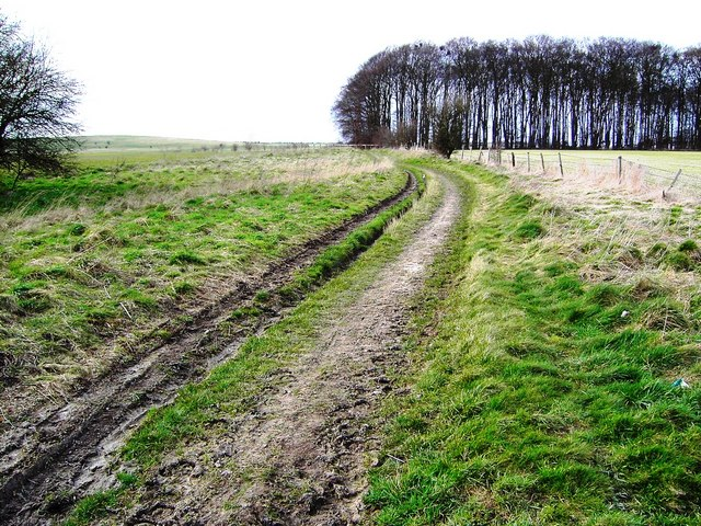 Byway to Crog Hill, Oxfordshire