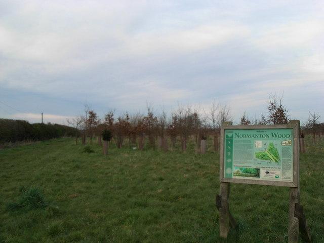Normanton Wood