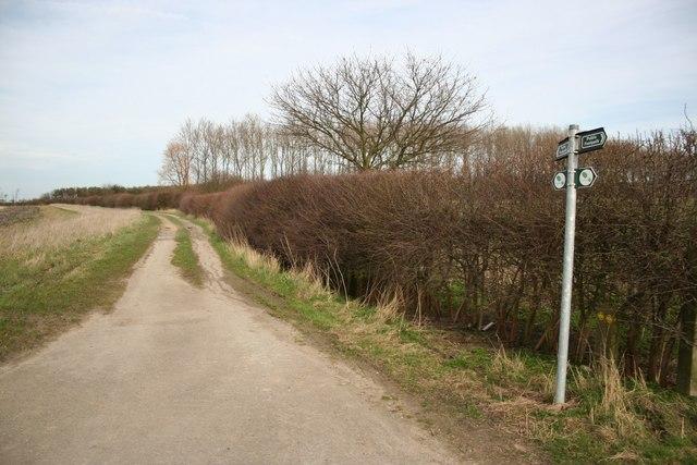 Path to Hop Hill Farm