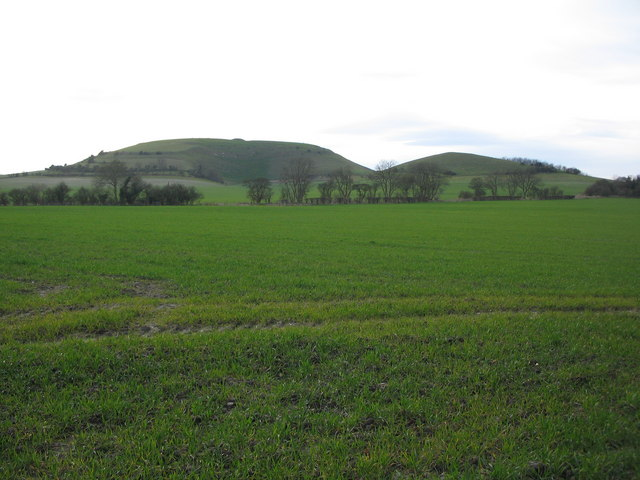 Cley  Hill from Norridge Wood
