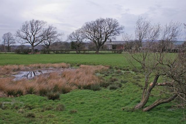 Field by Nightfield Gate