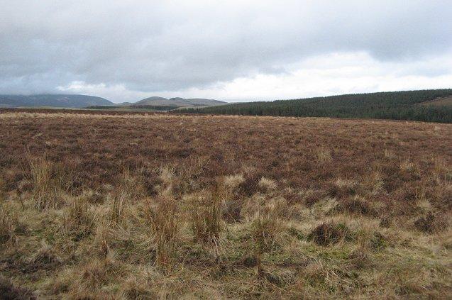 Moors near Fornethy