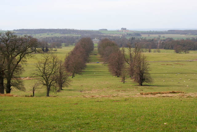 Belton Estate from Bellmount Tower