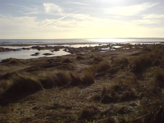 View of Kinshaldy beach from Tentsmuir Forest