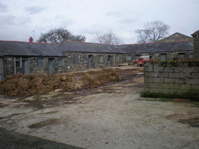 Ty Mawr farm yard.