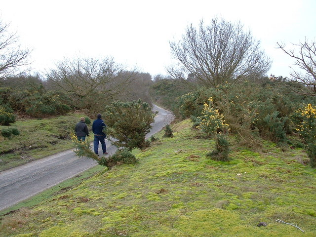 Westleton Common