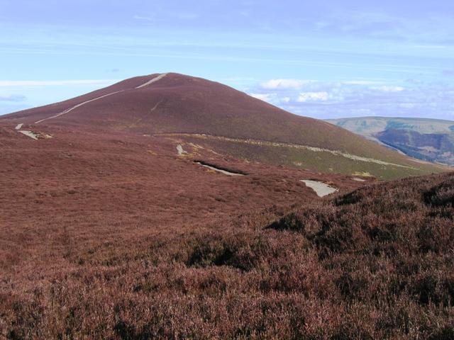 Moorland and Moel Morfydd