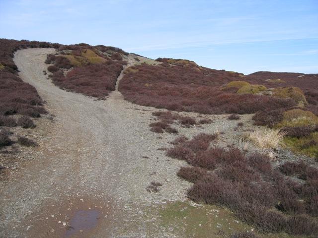 Track to Moel Morfydd