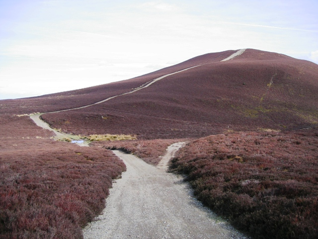 Track Junction near Moel Morfydd