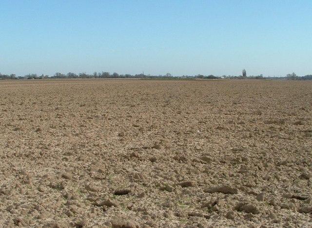 Big sky, big field