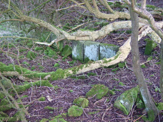Cattle shed remains