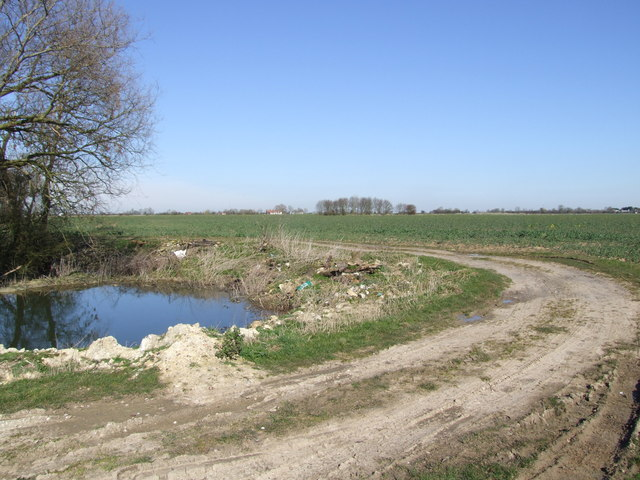 Pond and Bridleway, Wacton Common