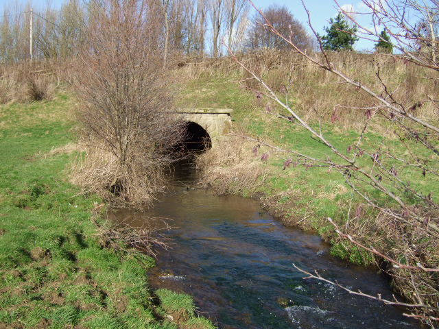 Warney Brook