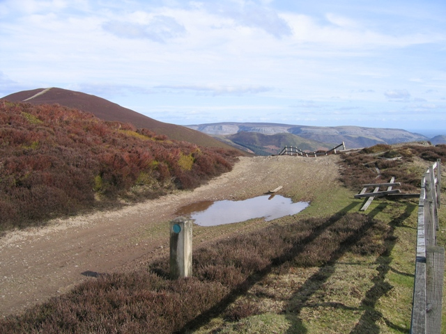 Track and Fence near Moel Morfydd