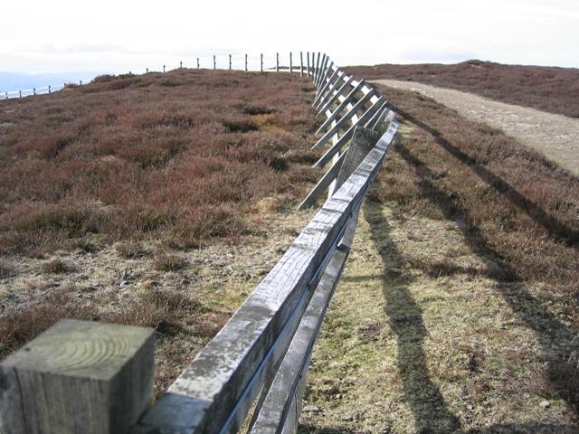 Fence and Track near Moel Morfydd