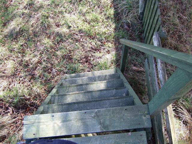 Pedestrian ladder and gate