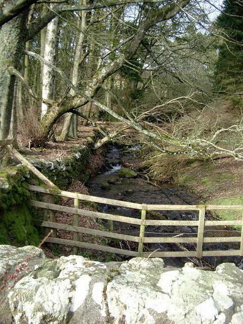 Tributary of the Quharity Burn at Burnside of Balintore