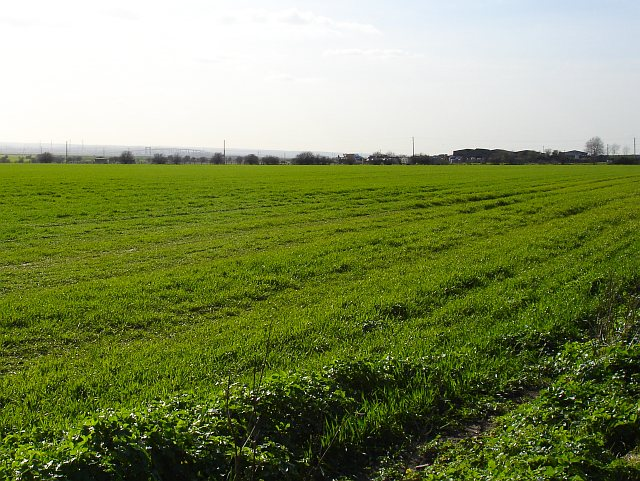 Farmland south of Lower Road