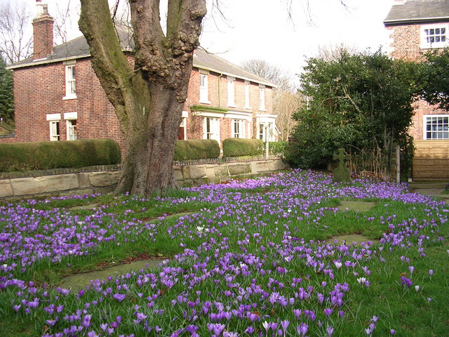Spring at St Wilfrid's