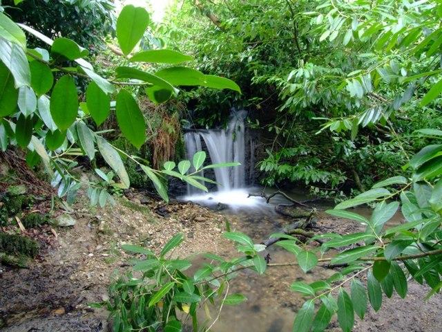 Waterfall Pencallenick Gardens