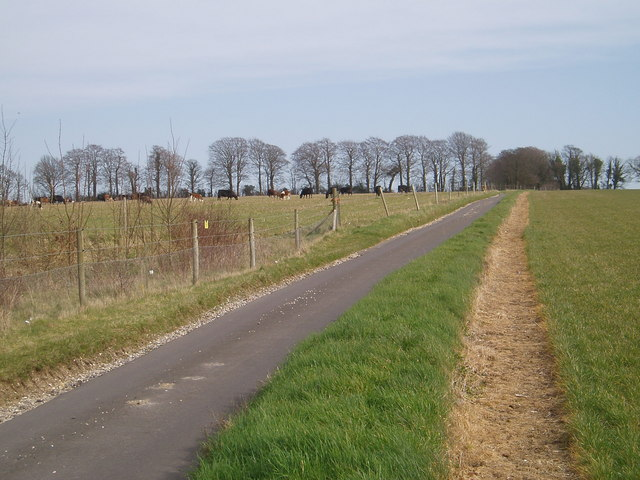 Hampshire Downland