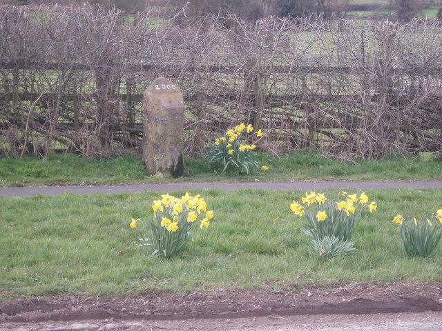 Mile Stone,Wallash