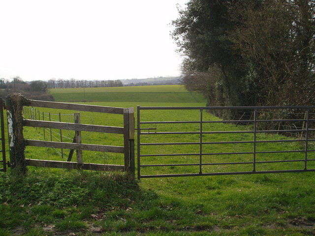 Farmland in the Meon Valley