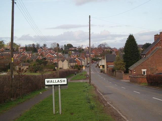 Wallash Mayfield