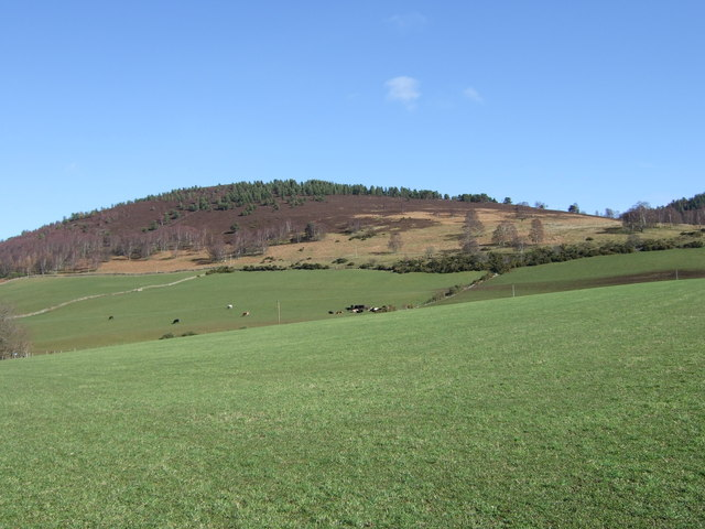 View towards Leadlich in Spring