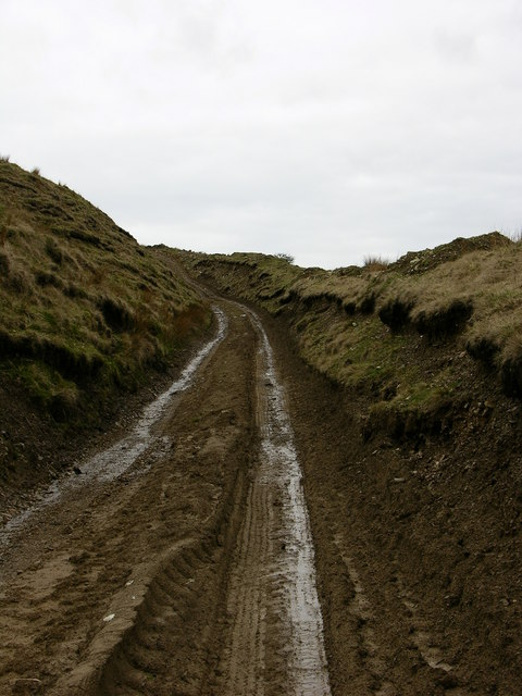 Track up to Old Musbury Heights Quarry