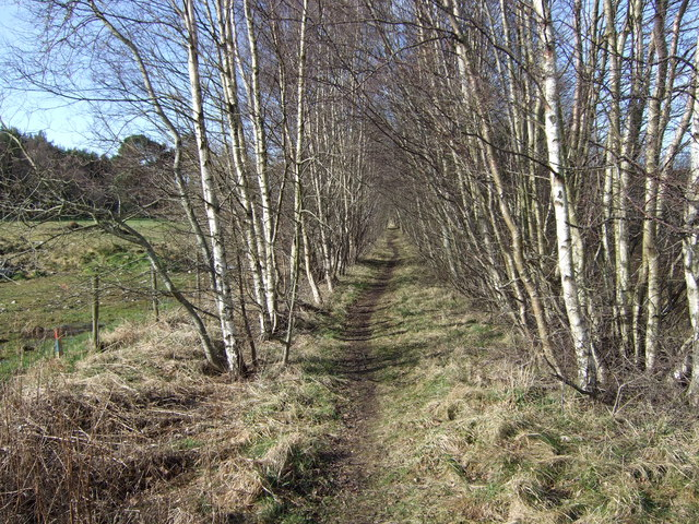 Footpath along line of former Deeside railway.