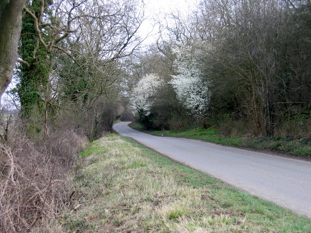 Byroad leading down to Holywell Lake