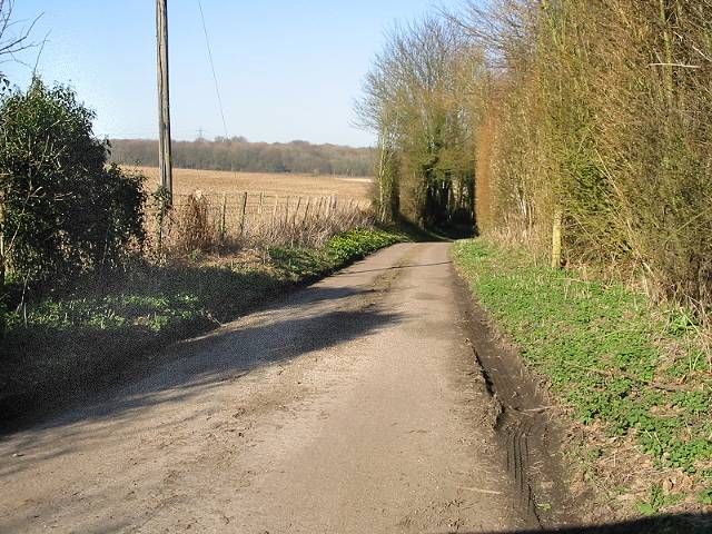 The road from Wickham Bushes