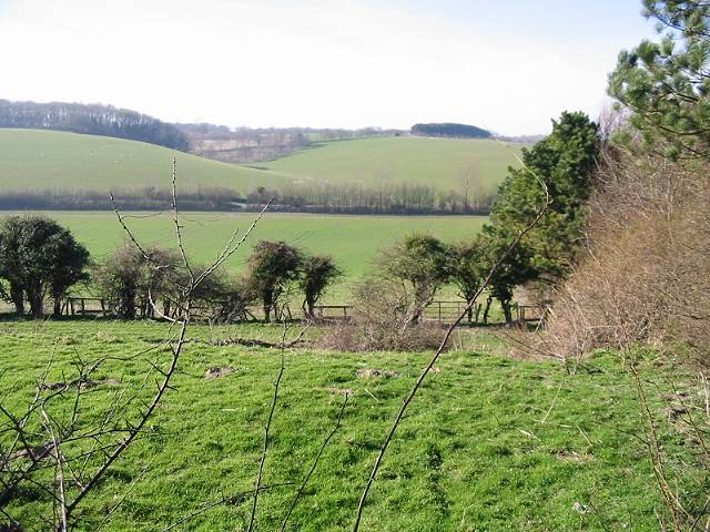 View over Warren Bottom