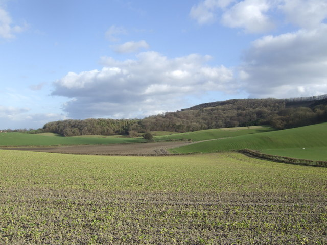 Foothills of the South Downs