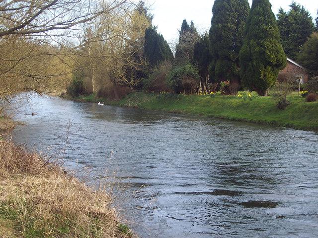 River Avon at Fittleton