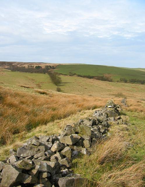 Fallen drystone wall