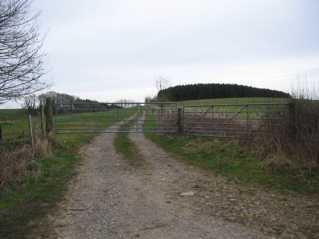 Track to Hinton Field