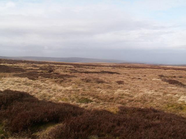 Moorland near Green hill