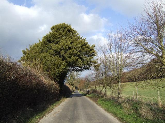 Dead-straight lane