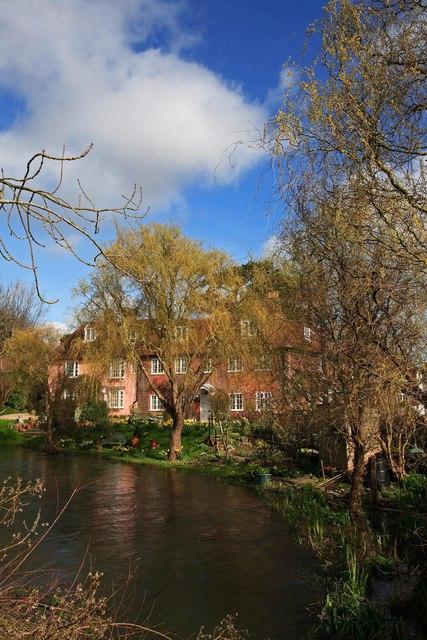 Stunning garden in Salisbury