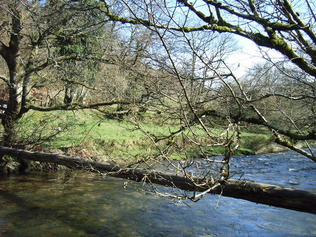 River Exe Log Bridge, Nr West Nethercote, Exmoor