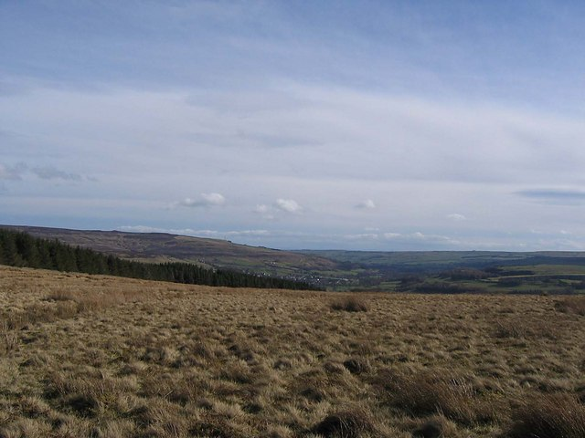 Reahope Moor looking towards Stanhope