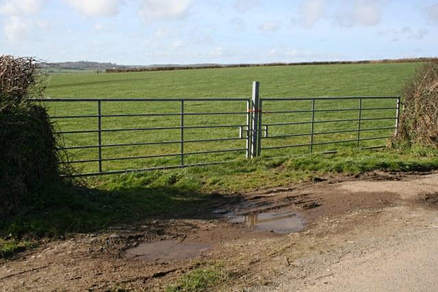 A Modern Field Gate