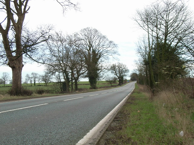 A5 road view