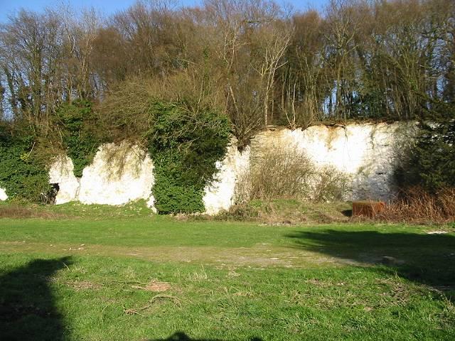 Disused chalk quarry at Langham Park Farm
